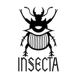 Insecta Shoes