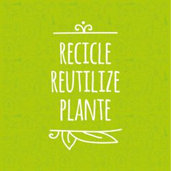 Recicle Reutilize Plante